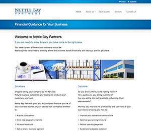 Nettle Bay Partners, a website designed on Long Island